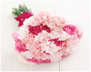 A Bouquet of Carnations
