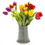 How to care and handle fresh cut flowers