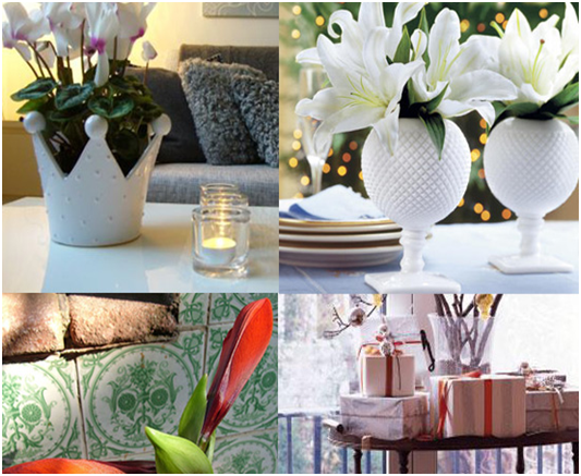 Holiday Decorating with Flowers & Plants