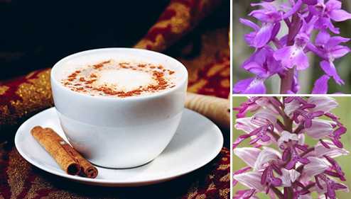 salep orchid